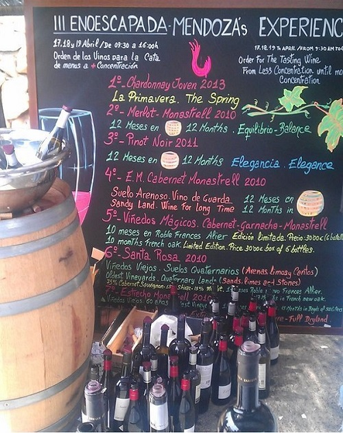 Wines tasted in the Wine Experience