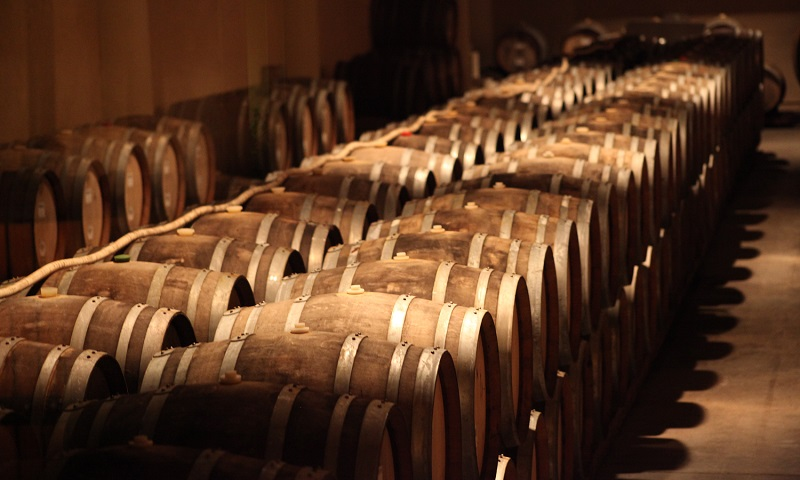 barrels in winery 2